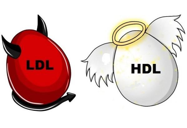colesterolo_alto_ldl_hdl-600x410